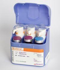 Сталораль Аллерген пыльцы березы