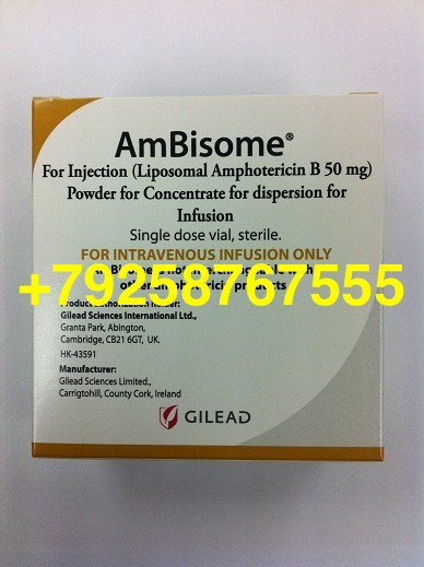 Амбизом (Ambisome)