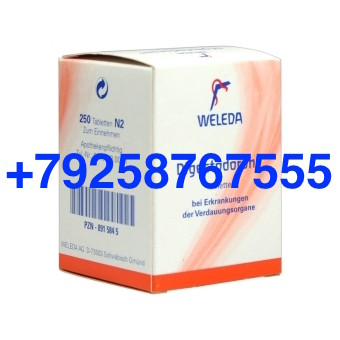 Digestodoron